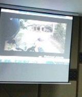 Jasa Pasang Screen Projector Motorized